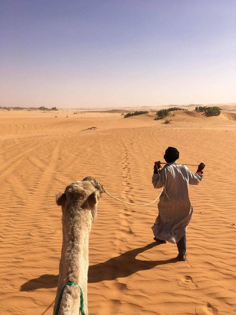 Camel and Camel Driver - Saddle View - the Adrar - Mauritania