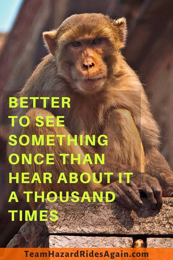 """Better to see something once than hear about it a thousand times."" – Anonymous"