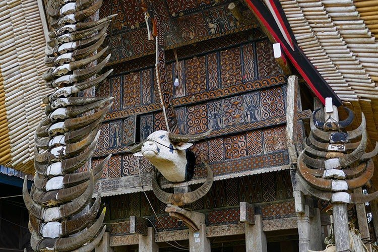 Tongkonan - Front View Close-up of Buffalo Carving on Traditional Toraja House