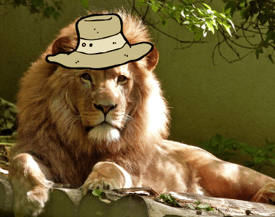 Best African Safari Hats for Women and Men