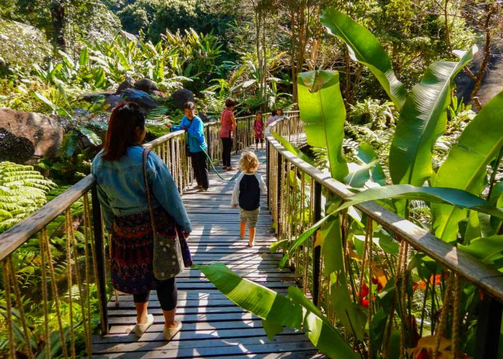 Visitors on a wooden walkway amidst a lush garden at the Teen Tok Royal Project Development Center near Mae Kampong, Chiang Mai, Thailand