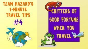 Geckos of Good Fortune - a Traveler's Friend - 1-Minute Travel Tips #4