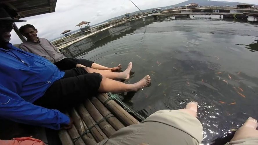 Cianjur, Indonesia The Floating Village, the Fishicure and the Escape
